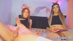 Gorgeous Shemale Duo Banging And Jerking
