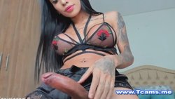 Sofia Ts Babe Loves Jerking Her Cock